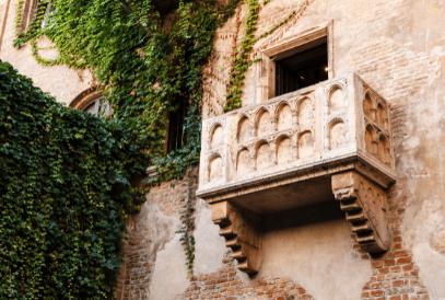 Продажа москитных сеток Verona по лучшей цене